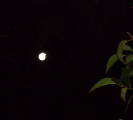 Lua de Porto Alegre