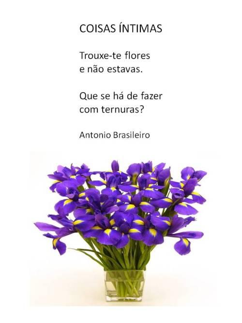 A.Brasileiro- Coisas intimas
